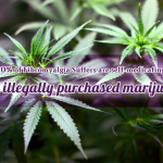 10% of Fibromyalgia Suffers are self-medicating with illegally purchased marijuana