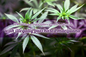 10 percent of Fibromyalgia Suffers are self-medicating with illegally purchased marijuana