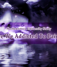 Are We Addicted To Pain Northwestern University Study